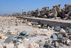 Paesaggio selvaggio sulla spiaggia Fotografia Stock Libera da Diritti