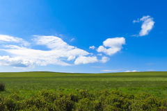 Paesaggio semplice di inglese per gli ambiti di provenienza Fotografia Stock
