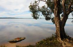 Paesaggio sereno con un albero su un lago Immagine Stock Libera da Diritti
