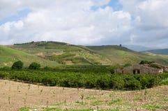 Paesaggio in Sicilia, Italia Fotografie Stock Libere da Diritti