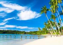 Paesaggio soleggiato Fotografie Stock Libere da Diritti