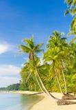 Paesaggio soleggiato Fotografia Stock Libera da Diritti