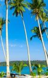 Paesaggio soleggiato Immagini Stock Libere da Diritti