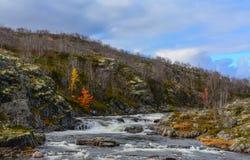 Paesaggio soleggiato di autunno del nord con una grande corrente fra le rocce Immagini Stock