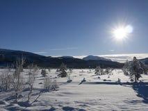 Paesaggio soleggiato, Norvegia fotografia stock