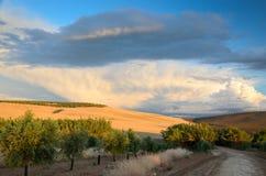 Paesaggio spagnolo del paese al tramonto Immagini Stock
