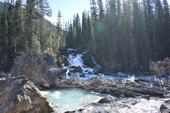 Paesaggio sparato di piccola cascata Fotografia Stock