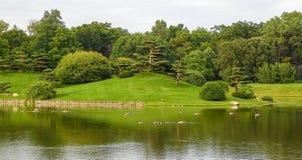Paesaggio spettacolare in giardino giapponese immagine stock libera da diritti