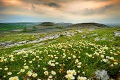 Paesaggio spettacolare nella regione di Burren di contea Clare, Irlanda fotografia stock libera da diritti