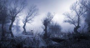 Paesaggio spettrale, scuro e nebbioso Fotografie Stock Libere da Diritti