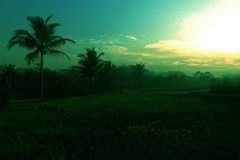 paesaggio splendido della montagna fotografia stock libera da diritti