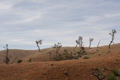 Paesaggio sterile Fotografie Stock
