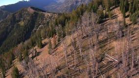 Paesaggio sterile della montagna video d archivio