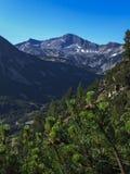 Paesaggio stupefacente con il picco di Banderishki Chukar, montagna di Pirin Fotografia Stock Libera da Diritti