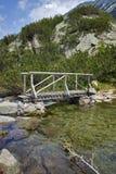 Paesaggio stupefacente del ponte di legno sopra il fiume vicino alla capanna di Vihren, montagna di Pirin Immagini Stock Libere da Diritti
