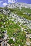 Paesaggio stupefacente della montagna di Pirin e la traccia per la scalata del picco di Vihren, montagna di Pirin Immagine Stock Libera da Diritti