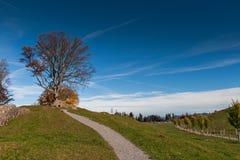 Paesaggio stupefacente di autunno sotto il supporto Rigi, alpi Fotografia Stock