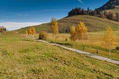 Paesaggio stupefacente di autunno sotto il supporto Rigi, alpi Immagine Stock
