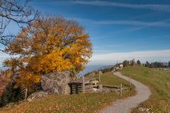 Paesaggio stupefacente di autunno sotto il supporto Rigi, alpi Immagini Stock