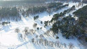 Paesaggio stupefacente di inverno video d archivio