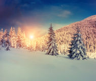 Paesaggio stupefacente di inverno immagine stock