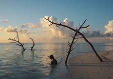 Paesaggio stupefacente di una spiaggia in Maldive fotografia stock