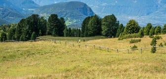Paesaggio stupefacente in dolomia, Tirolo del sud, Italia di estate delle montagne Il passaggio di Oclini Fotografie Stock Libere da Diritti