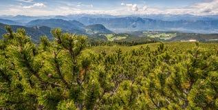 Paesaggio stupefacente in dolomia, Tirolo del sud, Italia di estate delle montagne Il passaggio di Oclini Fotografie Stock