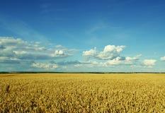 Paesaggio stupefacente Particolari dalla tastiera Cielo blu Fotografia Stock