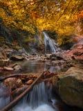 Paesaggio stupefacente verticale con la cascata e l'insenatura variopinta di freddo di Autumn Forest Autumn Forest Landscape With immagine stock
