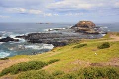 Paesaggio su Phillip Island, Victoria Fotografia Stock Libera da Diritti