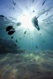 Paesaggio subacqueo con i raggi di sole Immagine Stock
