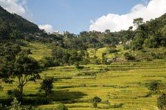 Paesaggio sul circuito di Annapurna, Nepal della montagna Fotografie Stock