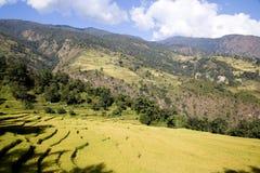 Paesaggio sul circuito di Annapurna, Nepal della montagna Fotografia Stock