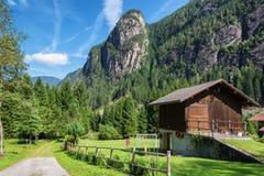 Paesaggio sulle dolomia, Trentino, Italia della montagna Immagini Stock Libere da Diritti