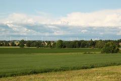 Paesaggio svedese Immagini Stock