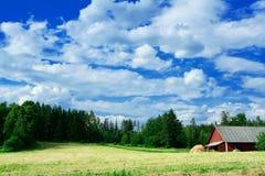 Paesaggio svedese del lato del paese Immagini Stock