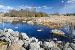 Paesaggio svedese della molla con il vecchio punto di riferimento Fotografia Stock Libera da Diritti