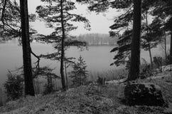 Paesaggio svedese di inverno in bianco e nero Fotografie Stock
