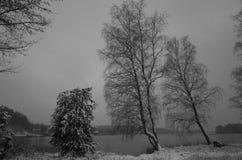 Paesaggio svedese di inverno in bianco e nero Fotografia Stock Libera da Diritti