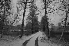Paesaggio svedese di inverno con una strada in bianco e nero Fotografie Stock