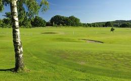 Paesaggio svedese di terreno da golf Fotografie Stock Libere da Diritti