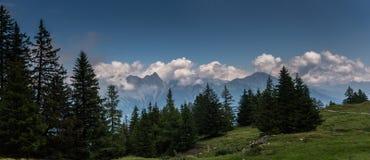 Paesaggio svizzero splendido della montagna delle alpi di estate con la foresta nella priorità alta Immagini Stock