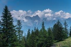 Paesaggio svizzero splendido della montagna delle alpi di estate con la foresta nella priorità alta Immagine Stock Libera da Diritti