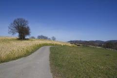 Paesaggio tedesco Odenwald Fotografie Stock Libere da Diritti