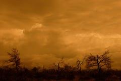 Paesaggio tempestoso Fotografie Stock Libere da Diritti