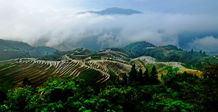 Paesaggio a terrazze del giacimento del riso fotografia stock