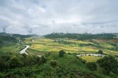 Paesaggio a terrazze del giacimento del riso con il fiume nella raccolta della stagione in Y Ty, distretto di Xat del pipistrello Fotografia Stock Libera da Diritti
