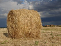 Paesaggio in terre di Siena Fotografia Stock