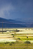 Paesaggio tibetano Immagini Stock Libere da Diritti